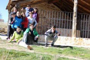 Grupo 4 (5)